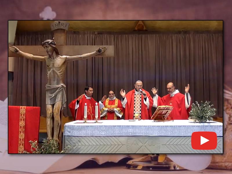 santa messa domenica delle palme, 5 aprile 2020